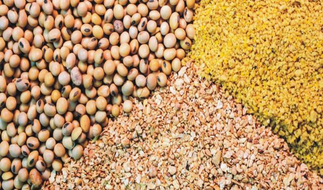 خلاصه مطالعات امکان سنجی (طرح توجیهی) تولید مکمل غذایی دام و طیور