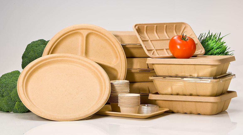 خلاصه مطالعات امکان سنجی (طرح توجیهی) تولید ظروف یکبار مصرف زیست تخریب پذیر